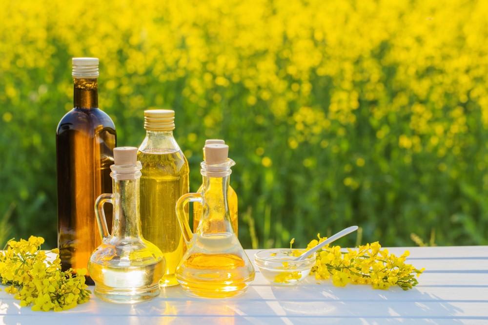 様々な植物油の入った瓶と菜の花畑
