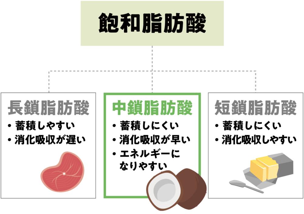 飽和脂肪酸が3種に分かれる事を説明した図