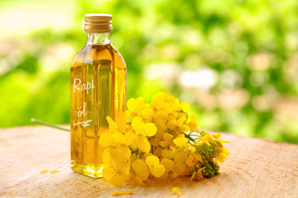 菜の花と菜種油の入った瓶