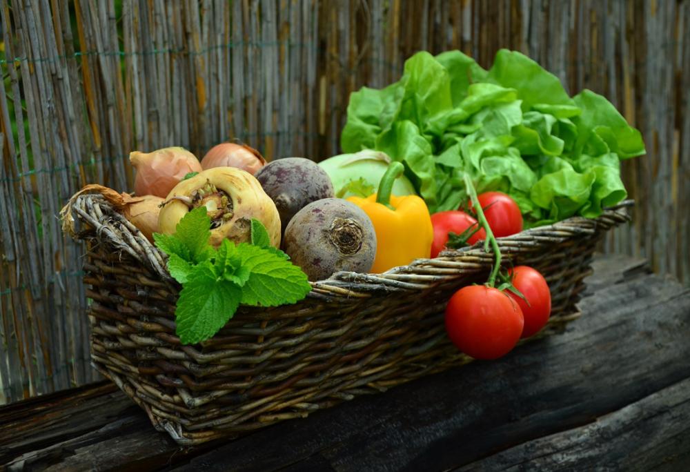 トマトやレタス、パプリカなどの野菜がカゴに入れられている