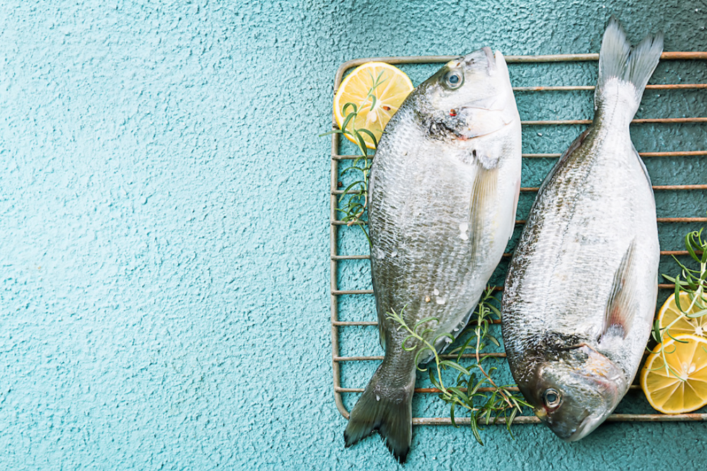 網のうえに魚、レモン、ハーブが並んでいる