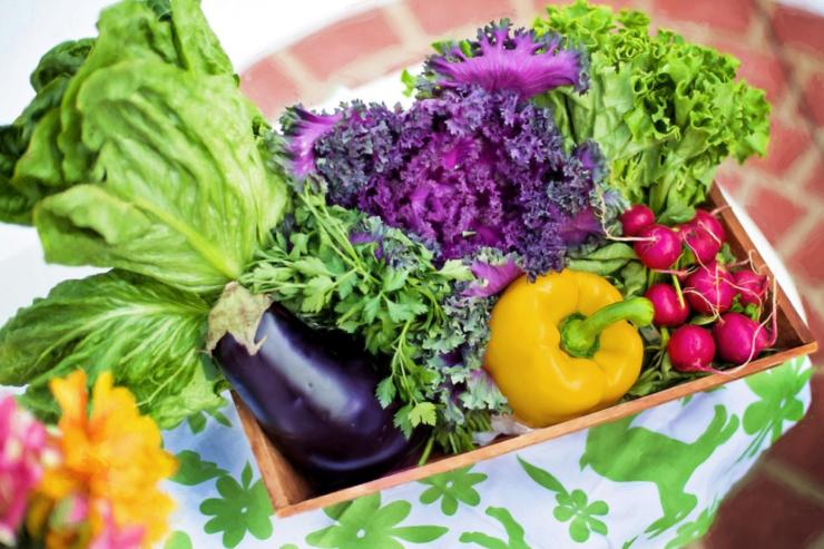 パプリカやナス、レタスなどの野菜が木箱に入れられている