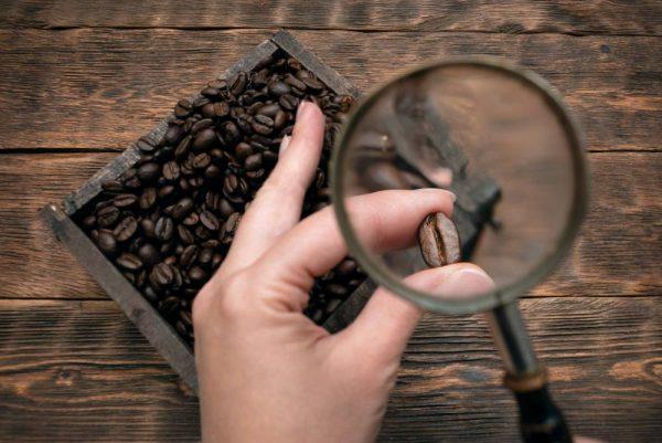 コーヒー見分け